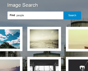 Angular Image Search App