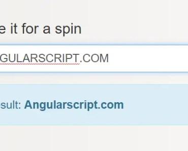 Angular Capitalize Filter