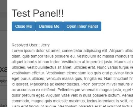 Angular Resizable Panel
