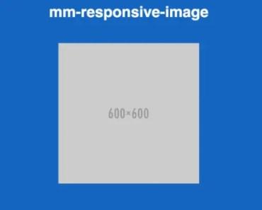 Modern Responsive Image Component For Angular