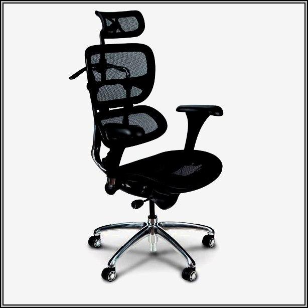 Ergonomic Desk Chair Back Support