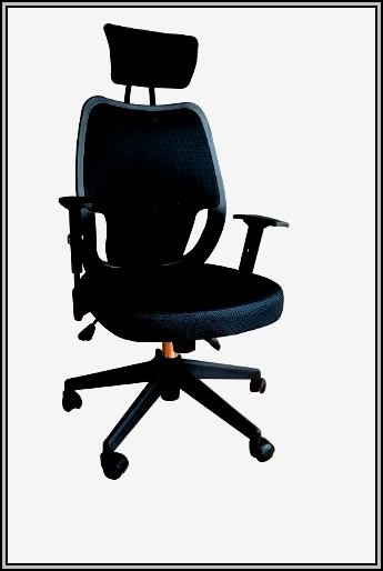 Ergonomic Desk Chair Cushion