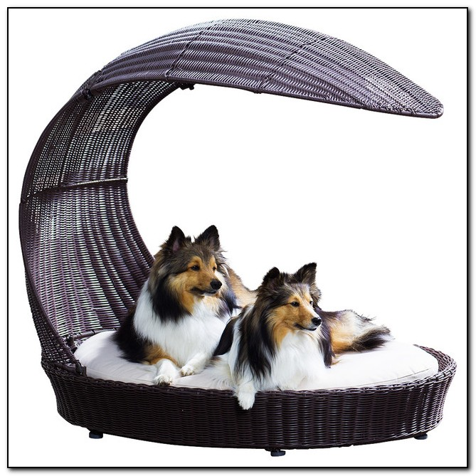 Outdoor Dog Beds With Canopy