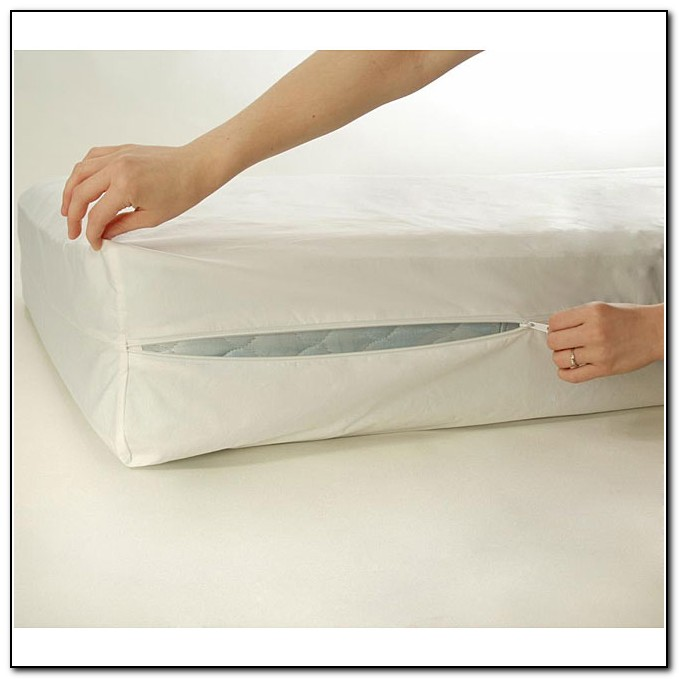 Bed Bug Mattress Covers Twin Xl