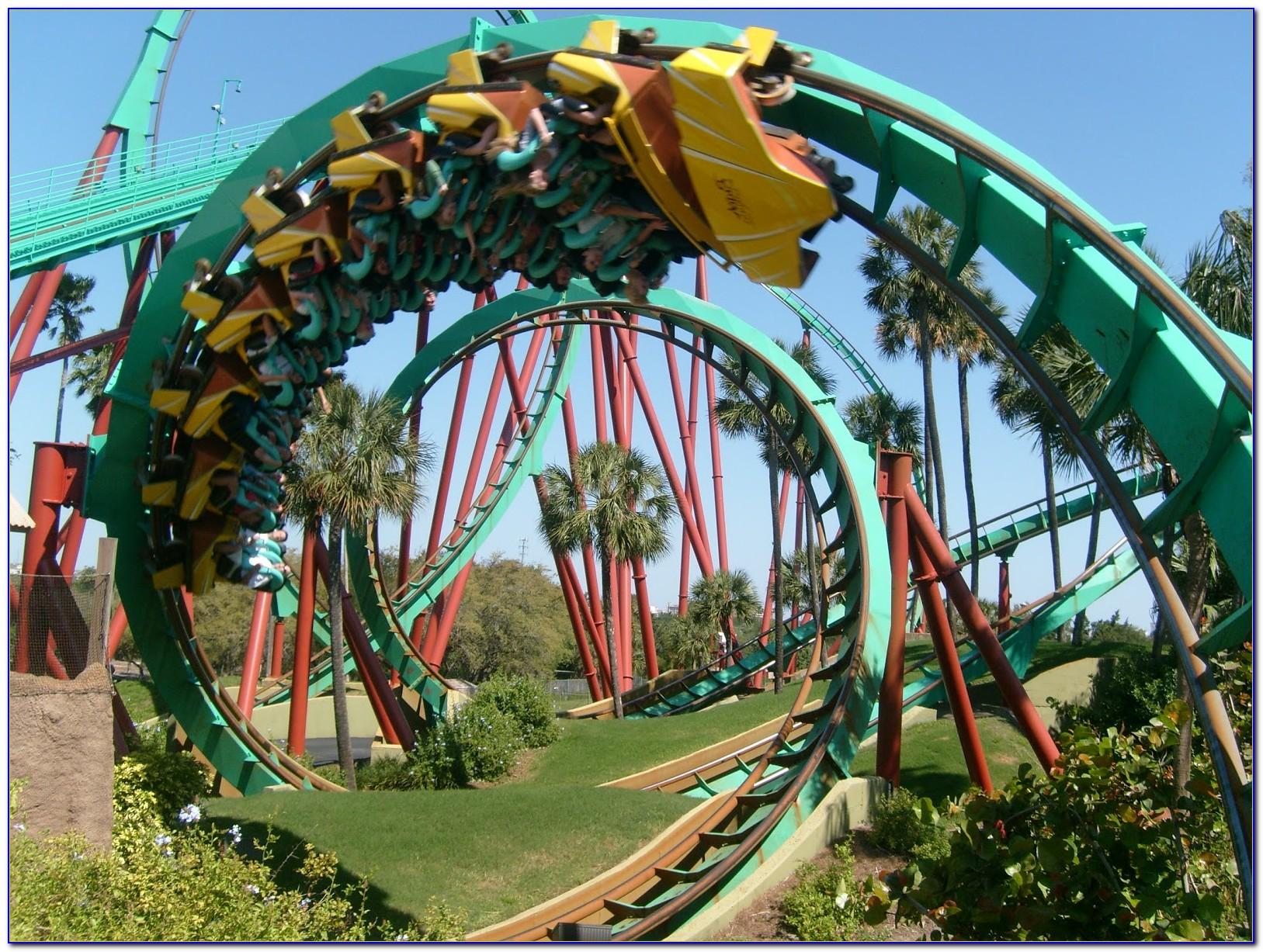 Busch Gardens Roller Coasters Griffon