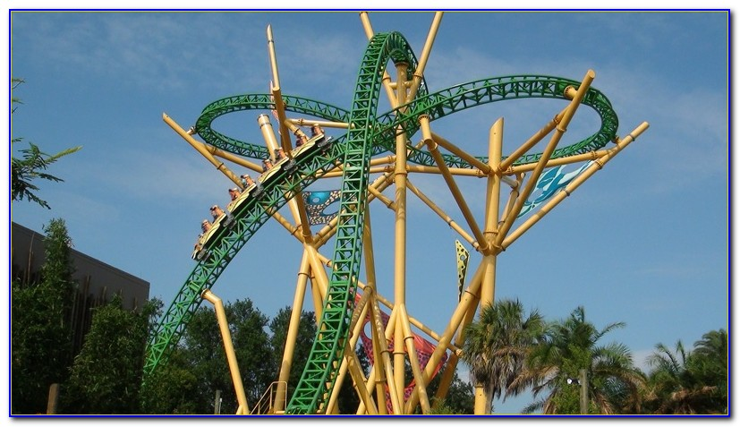 Cheetah Hunt Busch Gardens Speed