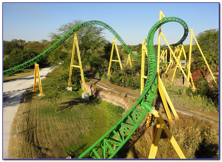 Cheetah Hunt Busch Gardens Stuck