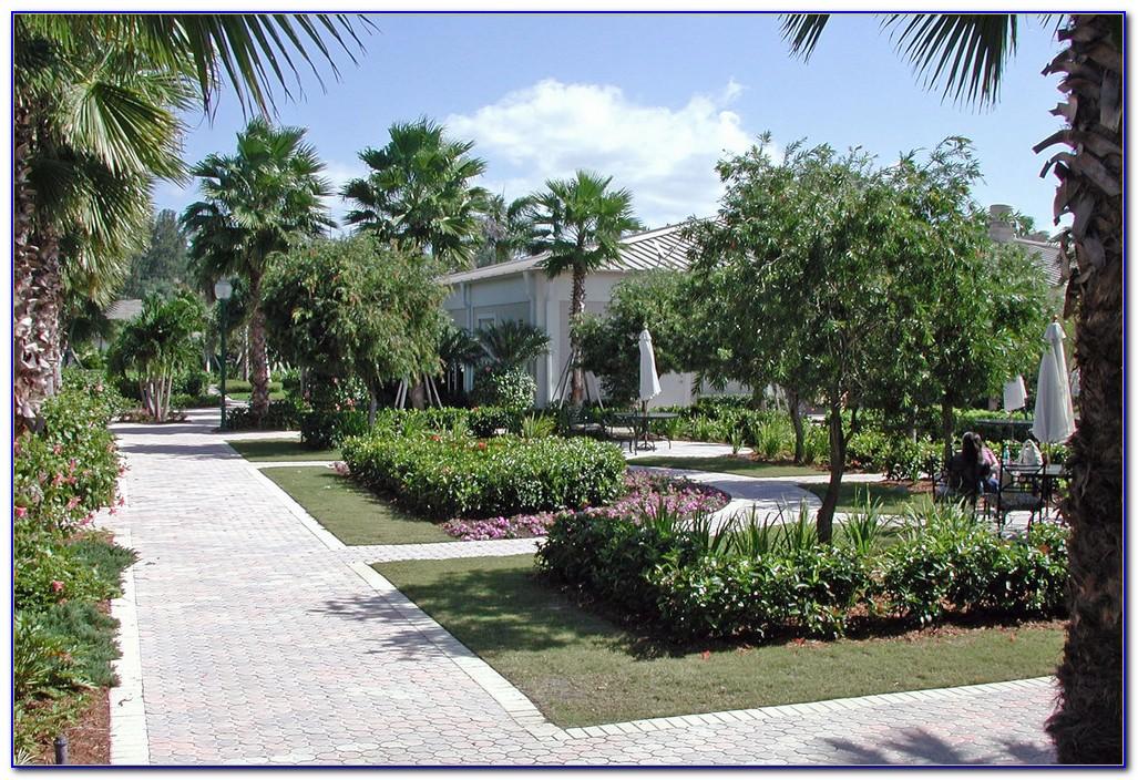 Christ Fellowship Palm Beach Gardens Jobs