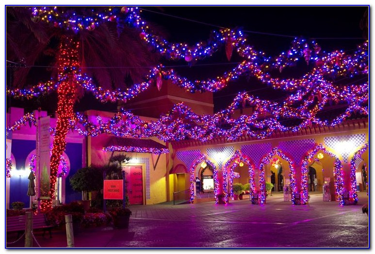 Christmas Town Busch Gardens Tampa Auditions