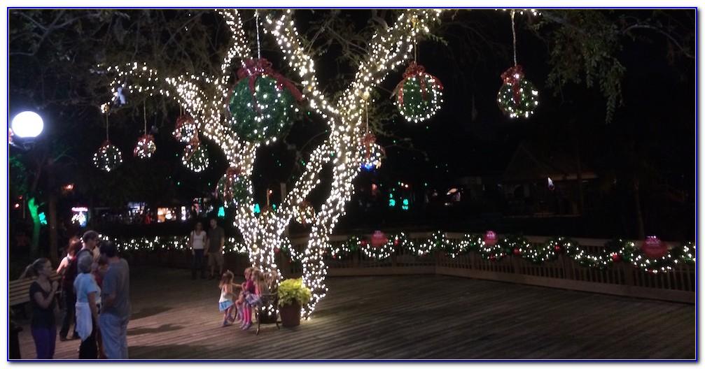 Christmas Town Busch Gardens Tampa Youtube