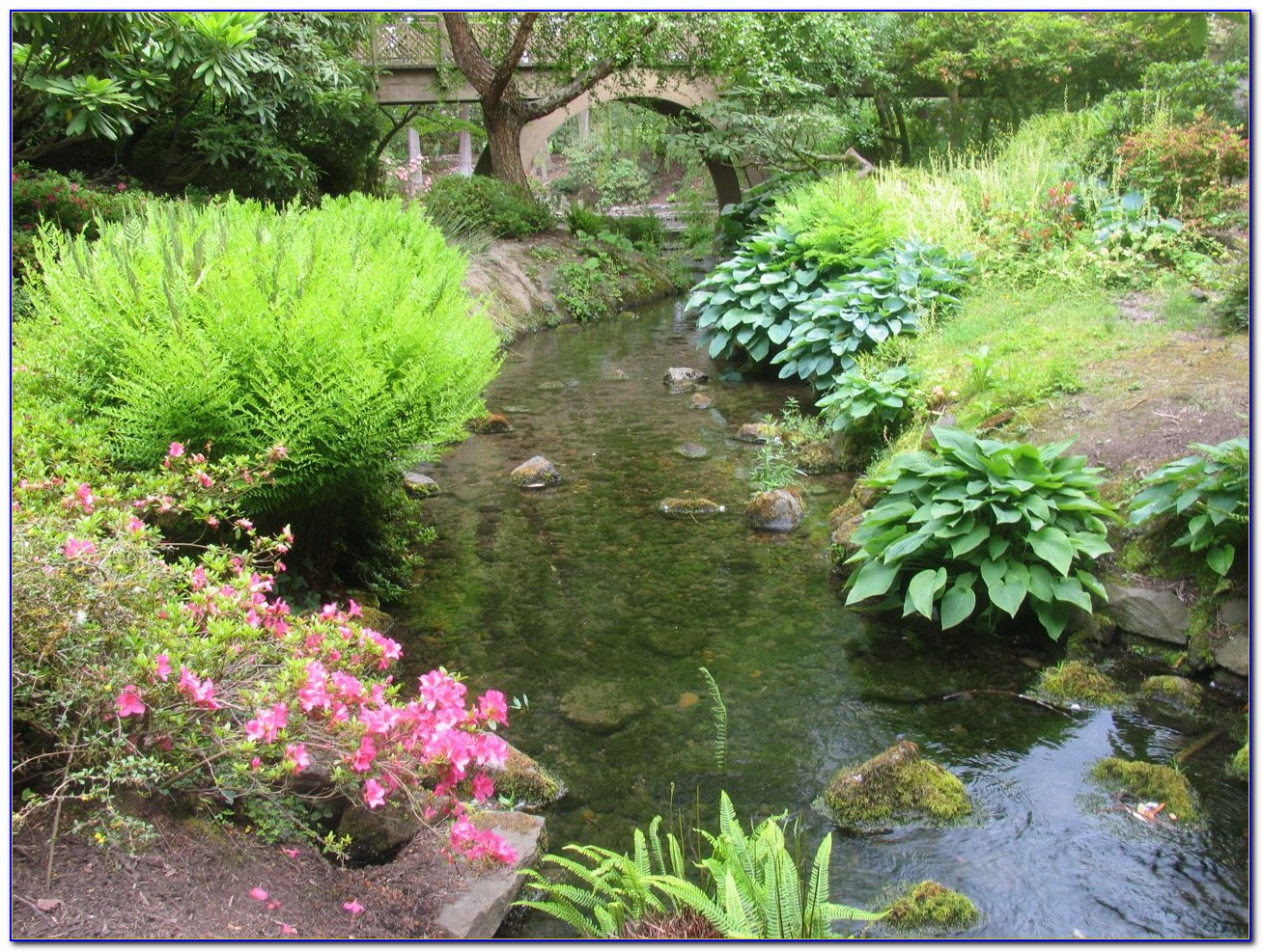 Crystal Springs Rhododendron Garden Admission