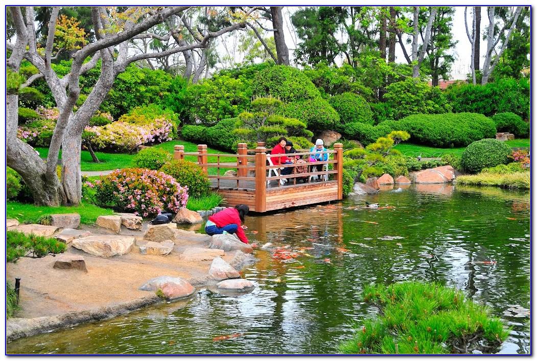 Earl Burns Miller Japanese Garden At Csulb