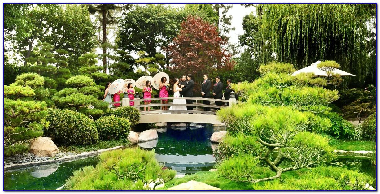 Earl Burns Miller Japanese Garden Hours