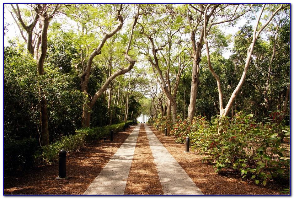 Fairchild Tropical Botanic Garden Challenge