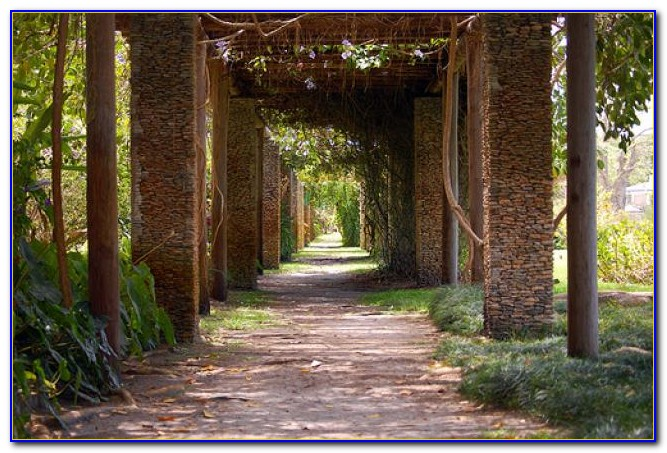 Fairchild Tropical Botanic Garden Events
