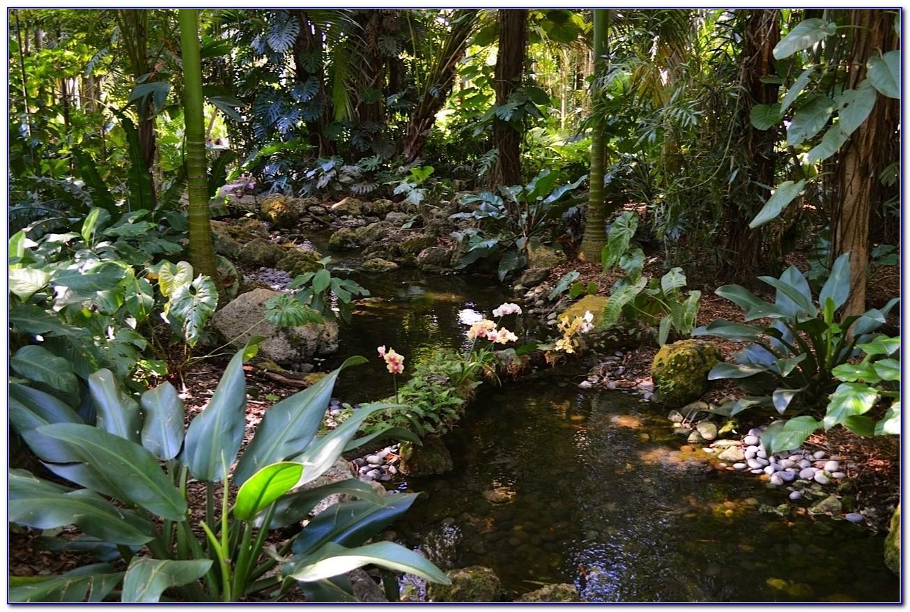 Fairchild Tropical Botanic Garden Wedding