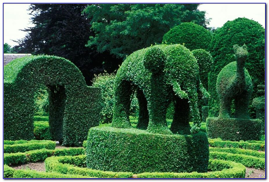 Green Animals Topiary Garden Hours