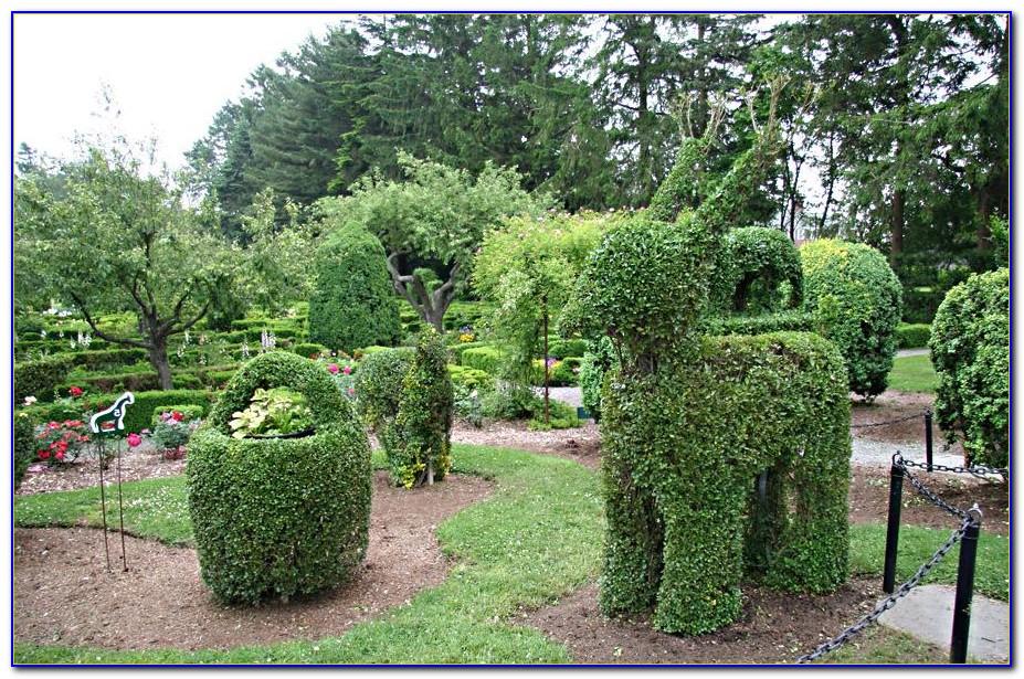 Green Animals Topiary Garden Portsmouth Ri