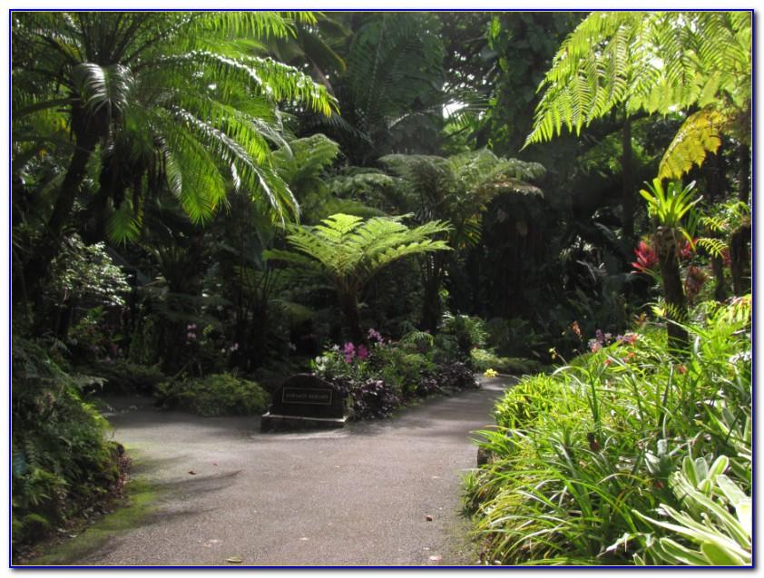 Hawaii Tropical Botanical Garden Wedding