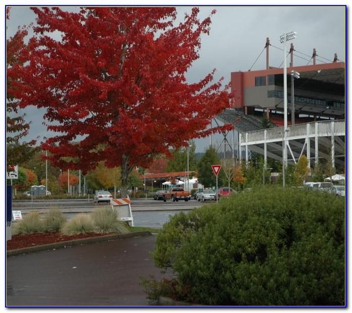 Hilton Garden Inn Corvallis Menu