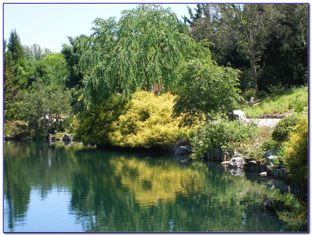 Hilton Garden Inn Sacramento Jobs