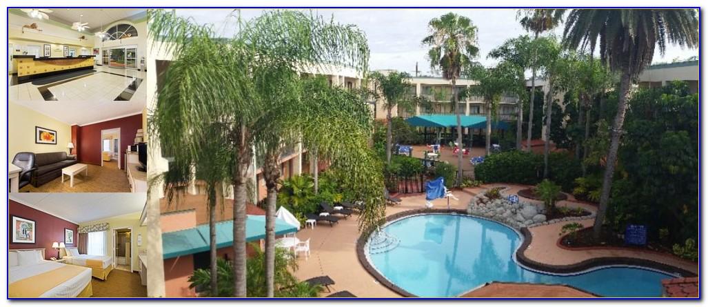 Hotels Near Busch Gardens Tampa Tripadvisor