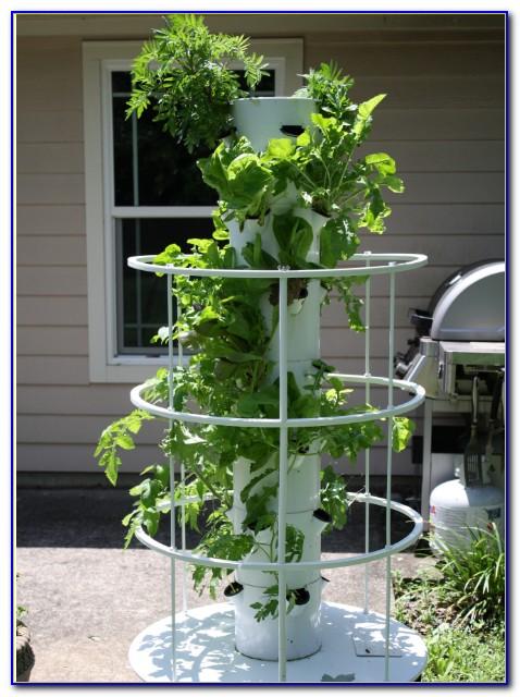 Juice Plus Tower Garden Seedlings