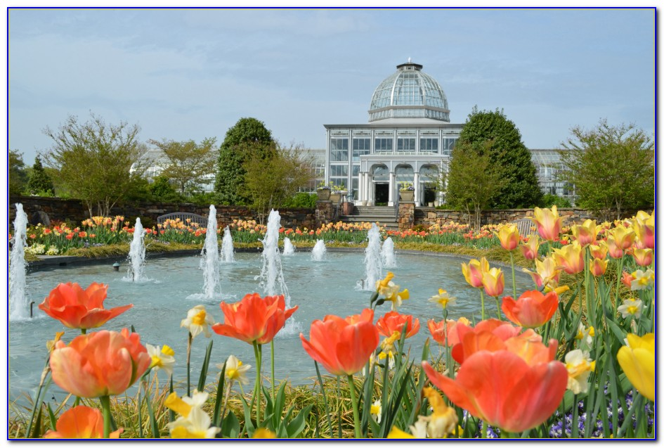 Lewis Ginter Botanical Gardens Lego