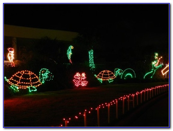 Moody Gardens Festival Of Lights Pictures