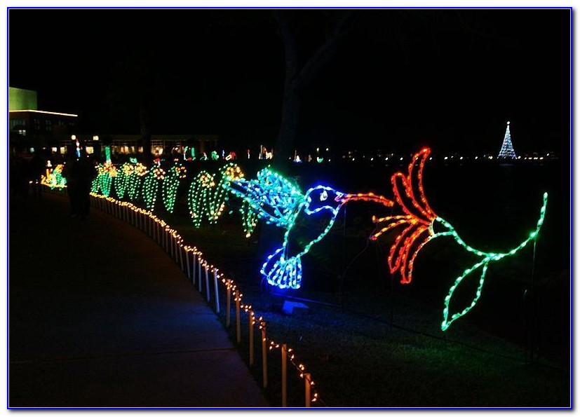 Moody Gardens Festival Of Lights Promo Code