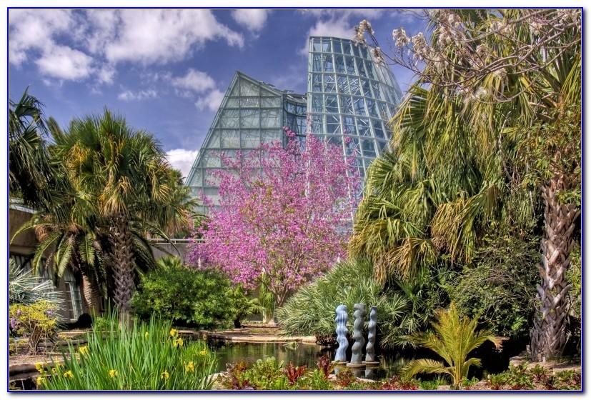 San Antonio Botanical Garden Restaurant
