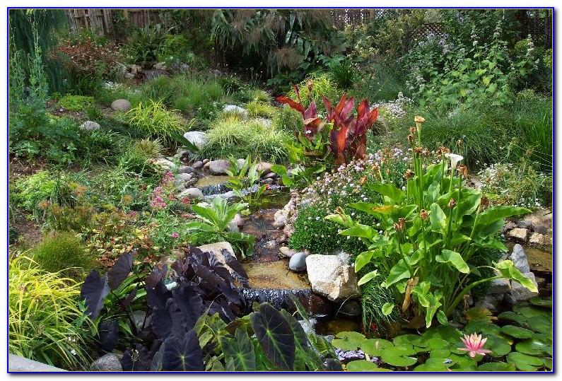 San Diego Botanic Garden Coupon