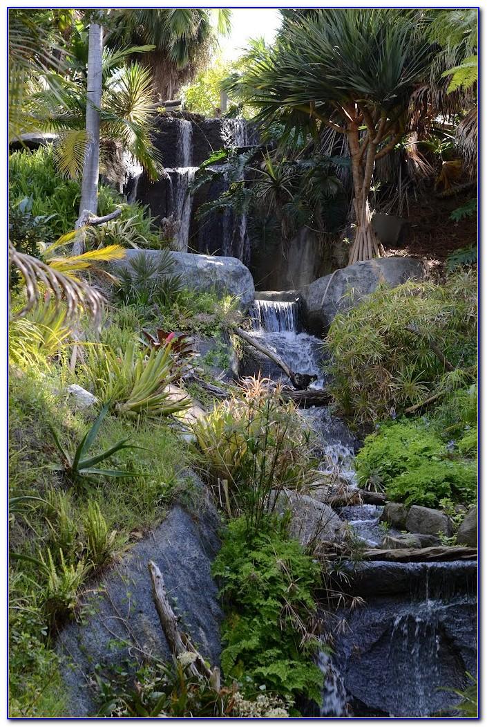 San Diego Botanic Garden Membership