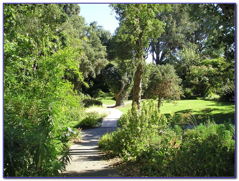 San Diego Botanic Garden Wedding Blog