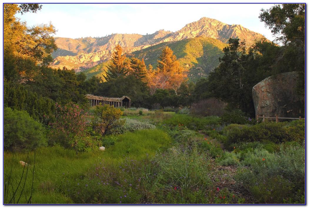 Santa Barbara Botanic Garden Wedding