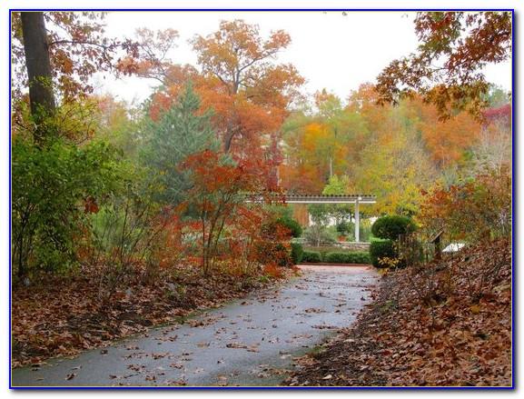 State Botanical Garden Of Georgia Trails