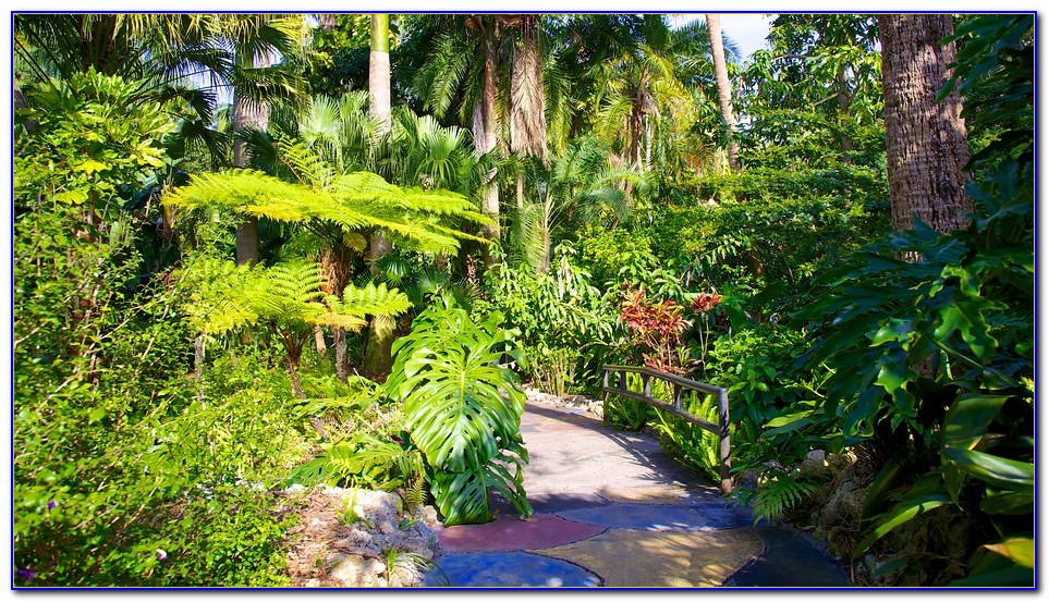 Sunken Gardens St Pete Yoga