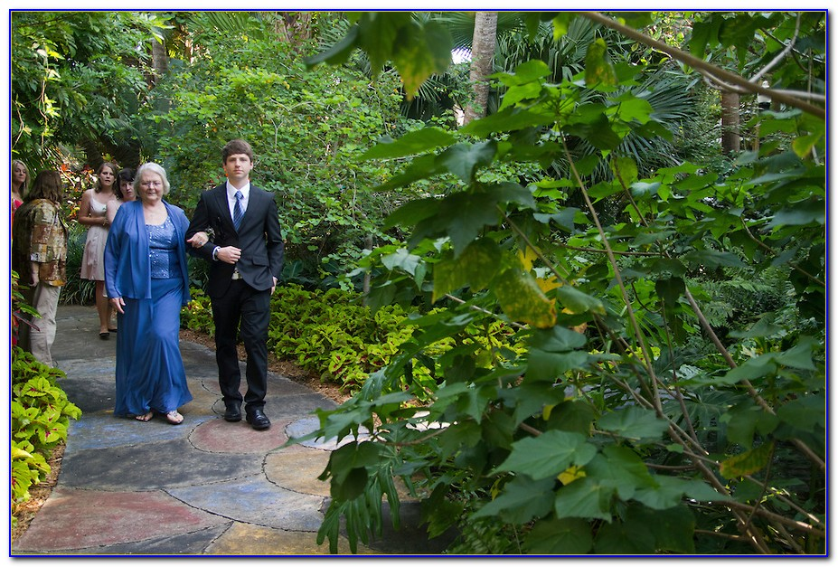 Sunken Gardens St Petersburg Wedding