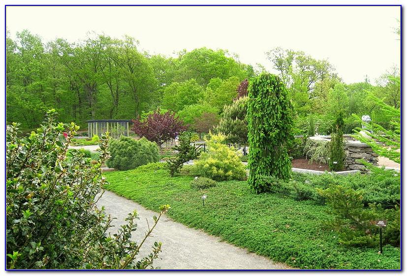 Tower Hill Botanic Garden Map
