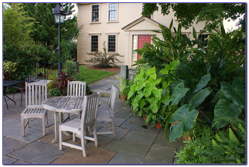 Tower Hill Botanic Garden Winter Reimagined
