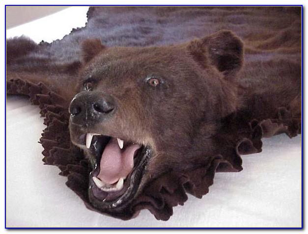 Bear Skin Rugs Amazon