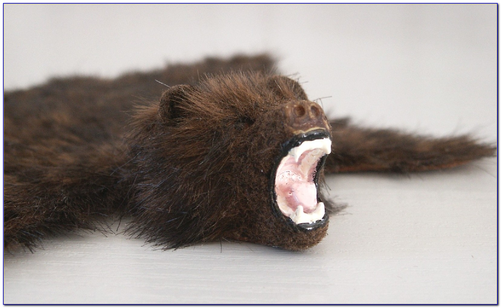 Bear Skin Rugs Illegal