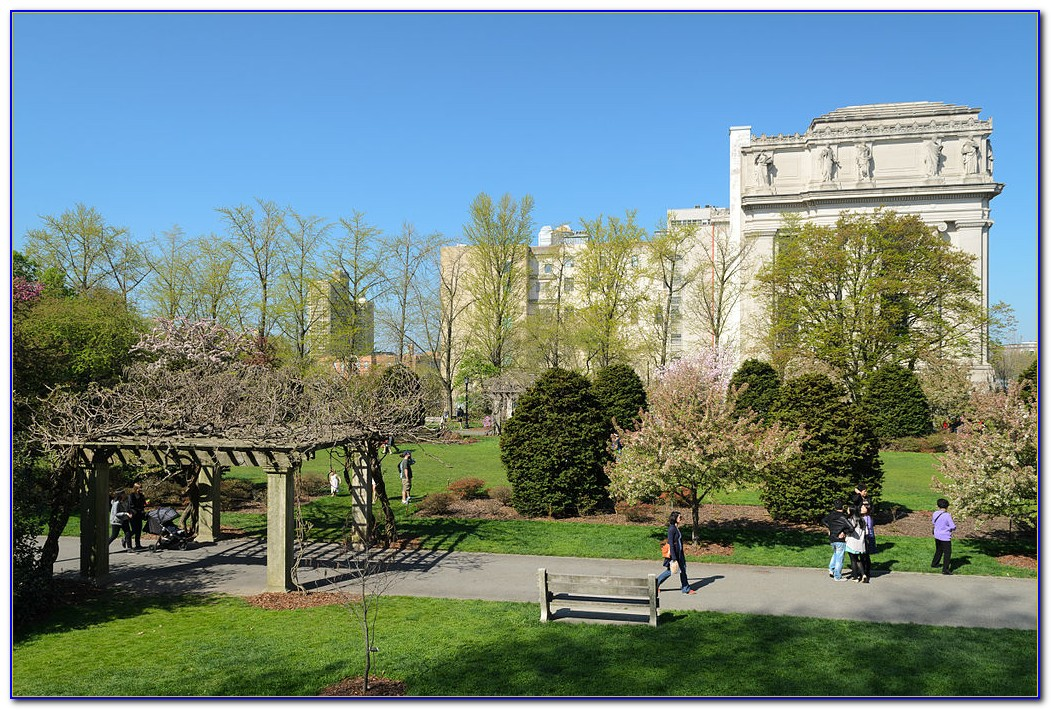 Botanic Garden Brooklyn New York Ny United States