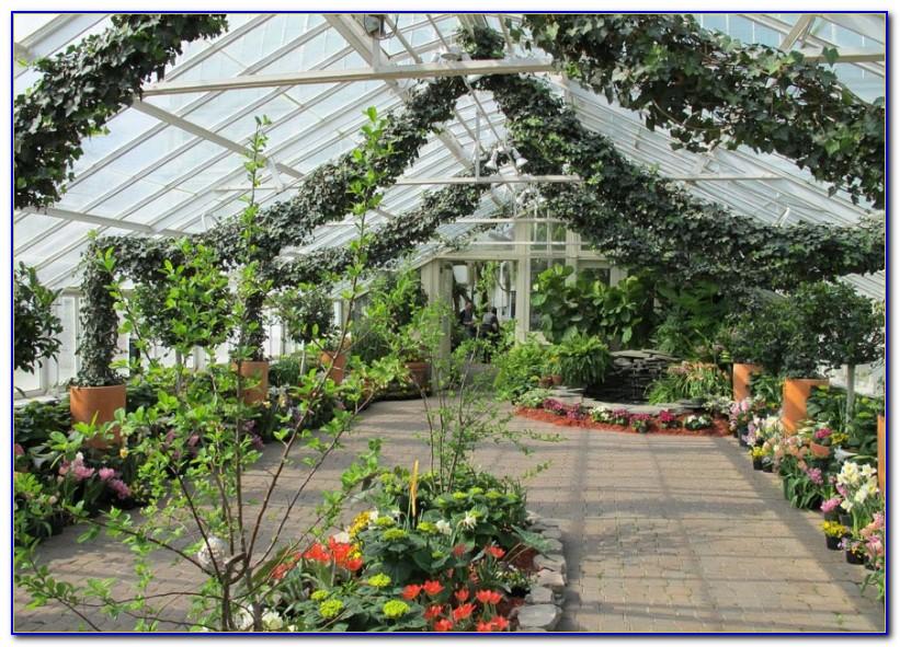 Botanical Gardens Buffalo Ny Hours