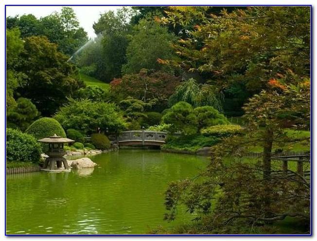 Brooklyn Botanic Garden New York United States