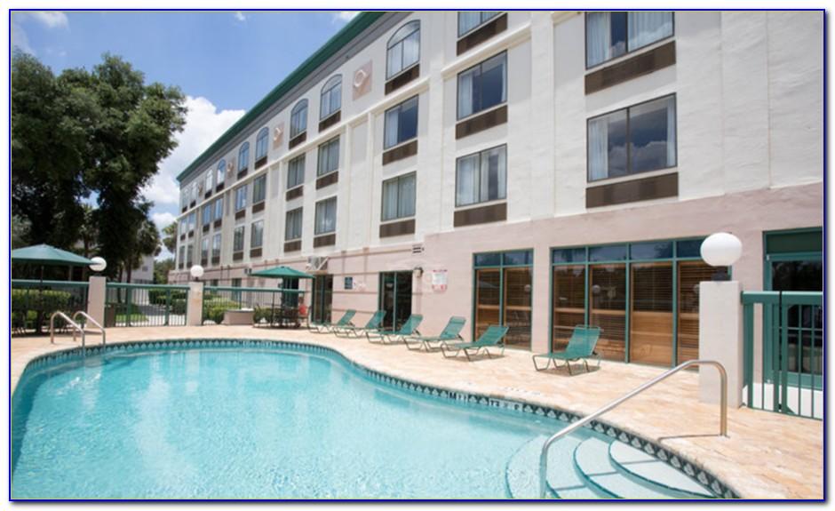 Busch Gardens Tampa Hotels Tripadvisor
