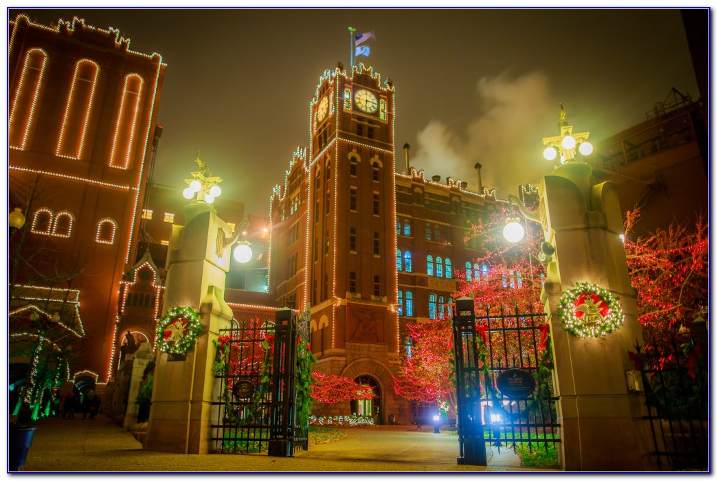 Busch Gardens Theme Park St Louis