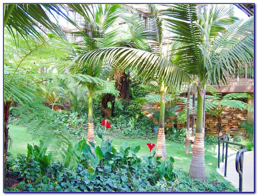 Callaway Gardens Pine Mountain Ga Directions