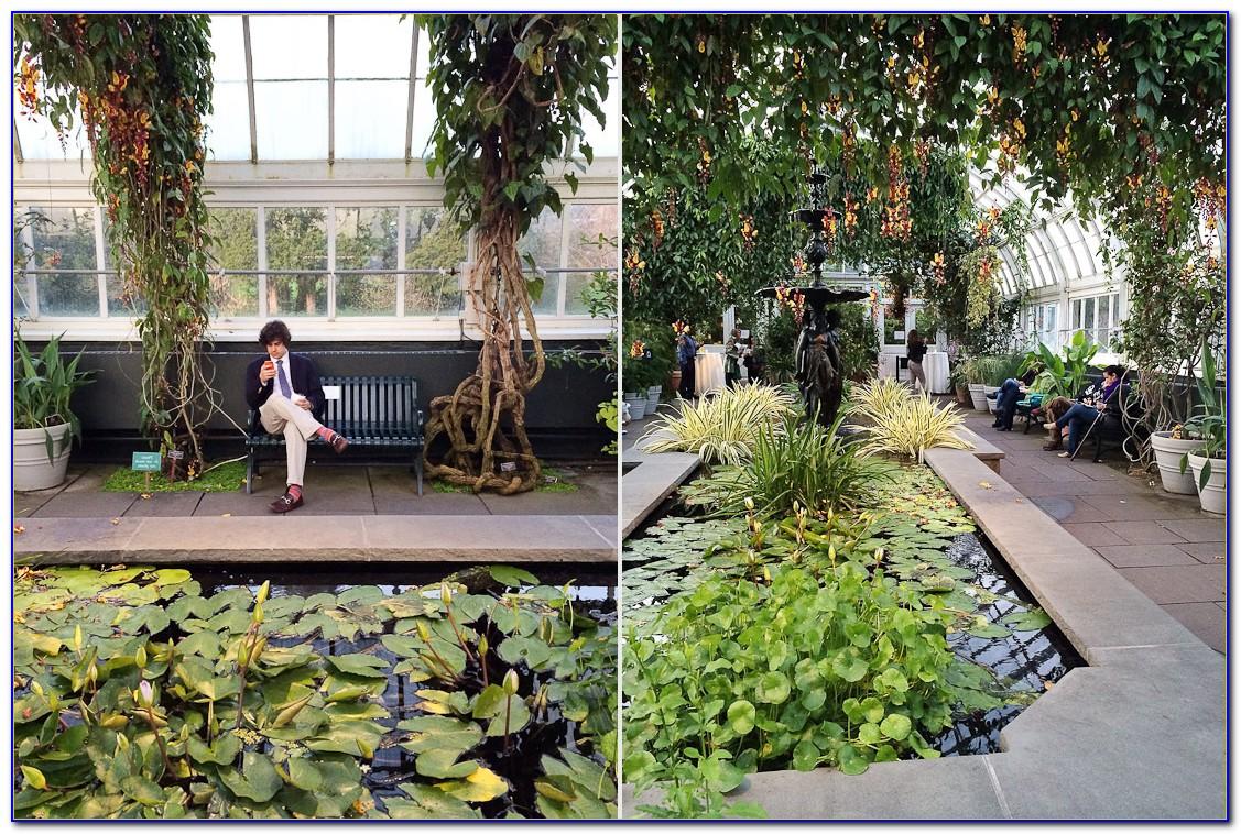 Directions To New York Botanical Garden Bronx