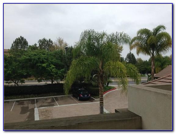 Hilton Garden Inn Del Mar Breakfast